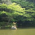 Photos: 池_新勝寺 D1286