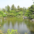 Photos: 池_新勝寺 D1288