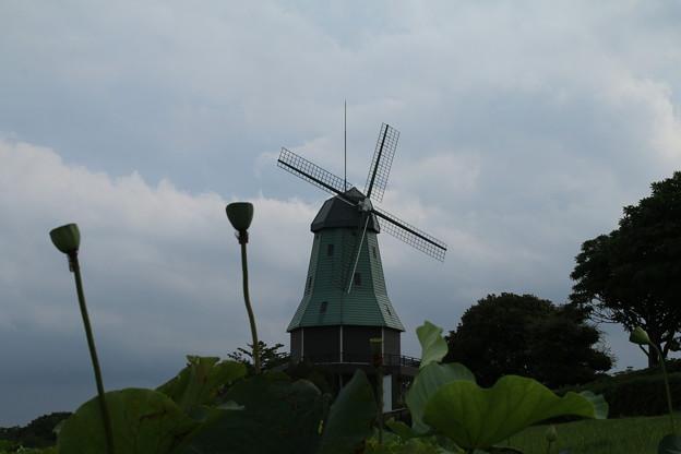 風車と_公園 D2504