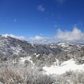 Photos: Snow 1-31-2016 (16)