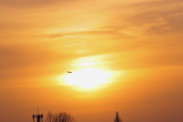 夕陽とJAL HAC