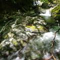 写真: 谷水躍る