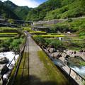 山里の小橋