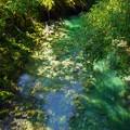 写真: 翠の川