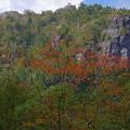 初秋色の岩山