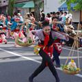 Photos: 躍る天秤棒