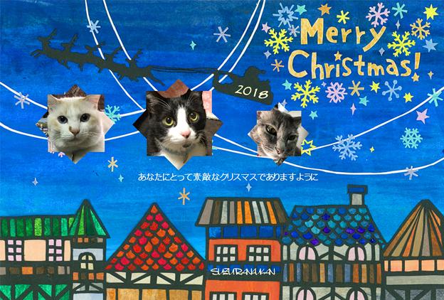 Photos: メリークリスマス♪