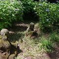 Photos: 浄慶寺(柿生)の羅漢像