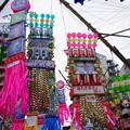 Photos: 湘南ひらつか七夕まつり