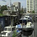 Photos: 品川浦