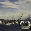 Photos: 船溜まりの風景