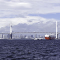 写真: 残暑の横浜