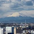 Photos: 富士を遠望
