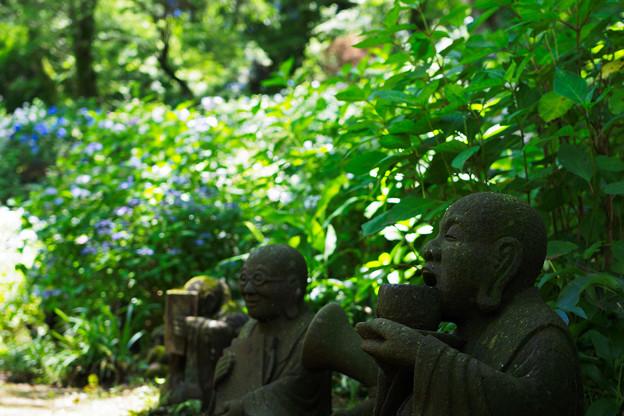 あじさい寺の羅漢像