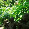 Photos: あじさい寺の羅漢像