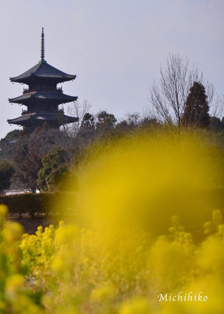 国分寺 五重塔