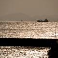 写真: 何でもない漁港の日常