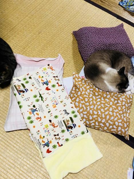 枕を作った