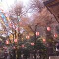 Photos: 御霊神社にて