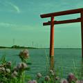 Photos: 鹿島神宮一の鳥居