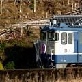 Photos: IMGP6309柳井市神代、特別なトワイライトエキスプレス2
