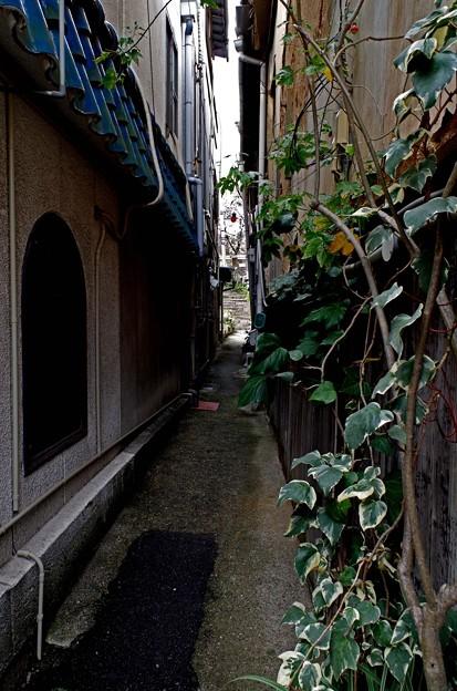 Photos: IMGP6694尾道市、熊野神社狭き門より入れ!