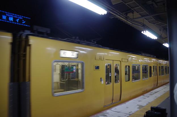 IMGP3167