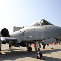 アメリカ空軍 Fairchild A-10 Thunderbolt II (81-0971)