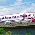 写真: 「ハローキティ新幹線」
