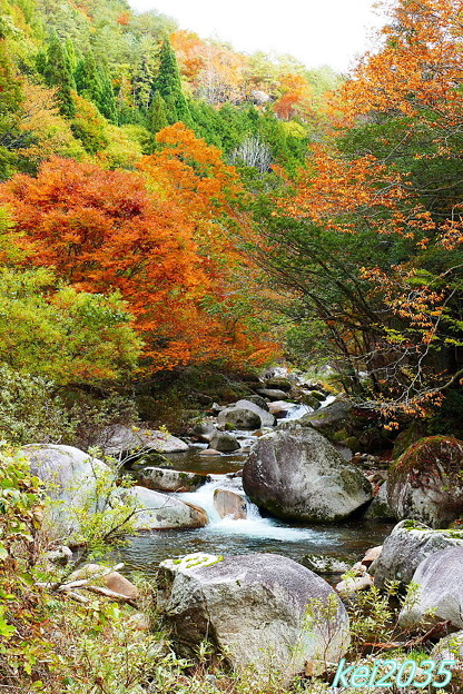 赤和瀬渓谷の紅葉
