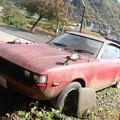写真: 朽ちゆくスポーツカー
