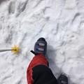 Photos: 山頂で気付くとスキー靴が崩壊 1