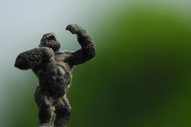 写真: Omake no King Kong