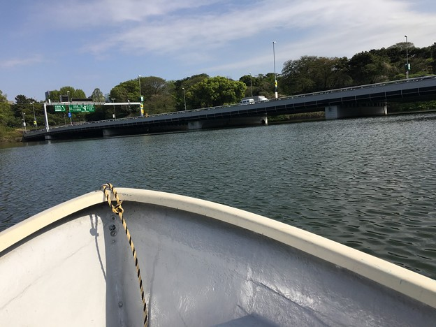 千鳥ヶ淵でボートに (1)