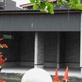 Photos: 雨が良く見える駐車場