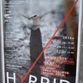 平山素子さんのHybrid初日公演を観てきた