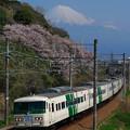 Photos: 185系プレDC静岡まつり号