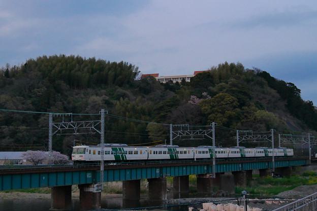 185系 プレDC静岡まつり号