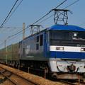 写真: 福山レールエクスプレス 54レ