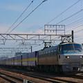 写真: EF66-104 カンガルーライナー