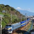 Photos: 2059レ EF66-27 カンガルーライナーに富士山