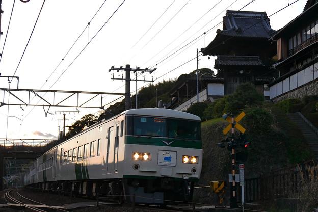 P1170501-1