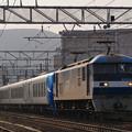 P1170616-1