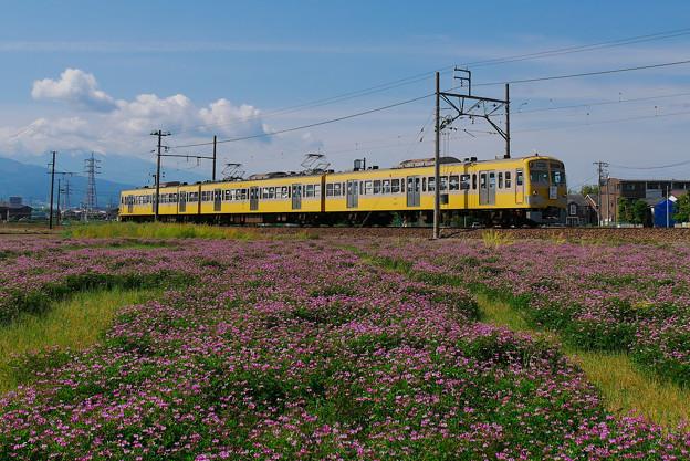 Photos: P1180080-1