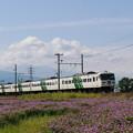 Photos: P1180088