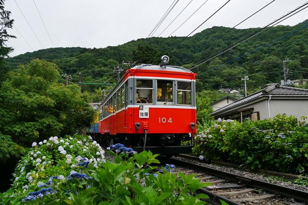 P1190078
