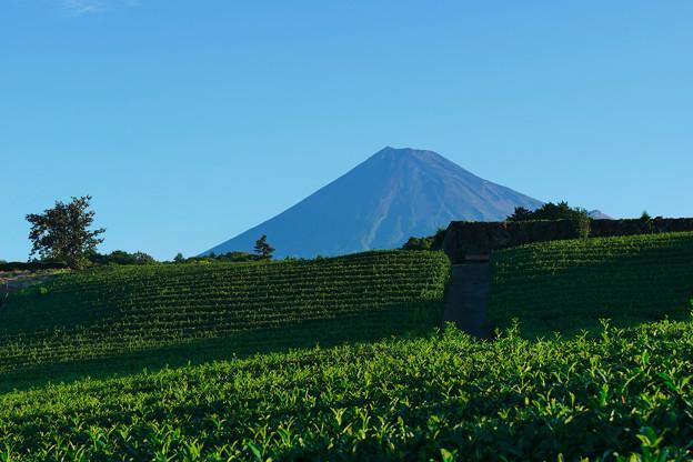 9/8の富士山