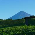 Photos: 9/8の富士山