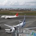 Photos: JAL出発