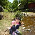 Photos: P1040091
